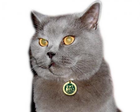 Katzen Geocoin mit Gravur