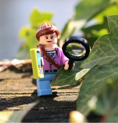 Hidey Lego